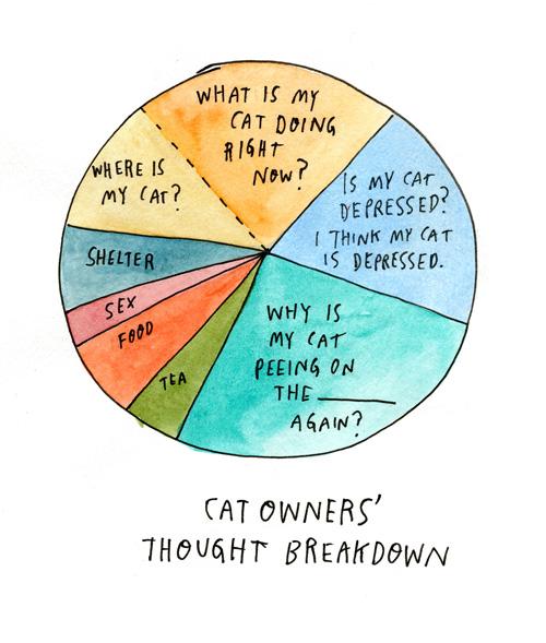 Lost Cat diagram of cat owner's breakdown