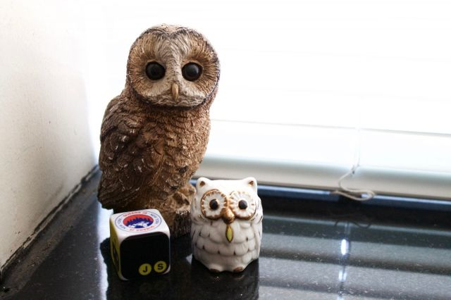 2 owl statues on a window sill with a javascript themed die