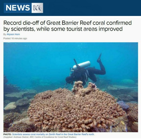 News story of Great Barrier Reef record die-off
