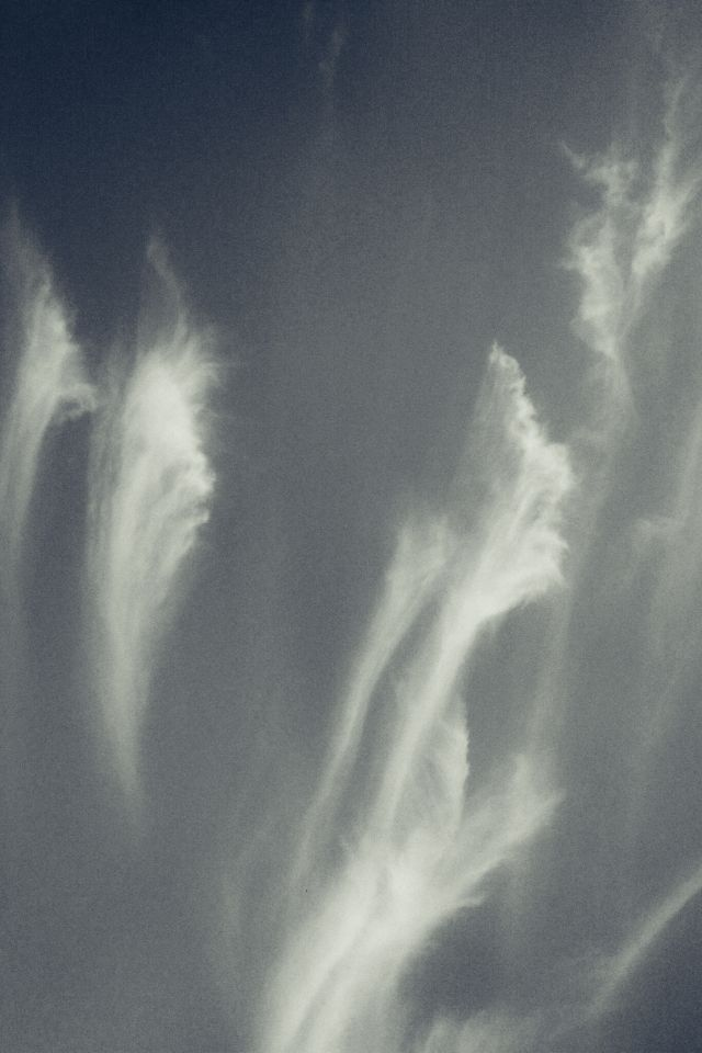 Wispy clouds high above our heads.