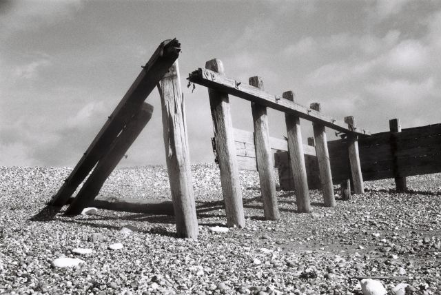 Old wooden posts leaning against each other by the sea