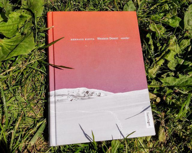 Rønnaug Kleivas noveller Western Desert
