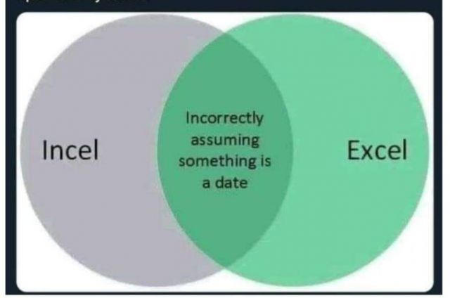 "A venn diagram of the words Incel and Excel, which cross over as ""Incorrectly assuming something is a date"""