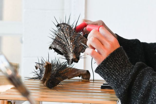 fingers plucking at a piece of spiky palm bark in a well lit gallery