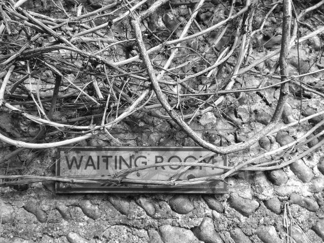 """A sign reading """"Waiting Room"""" hidden beneath bare branches."""