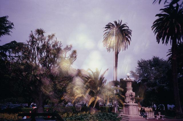 Souvenir de San Francisco 2011